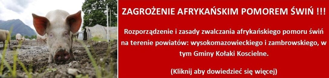 Apel w sprawie zgłaszania do powiatowych lekarzy weterynarii faktu zakupu świń na targowisku w gminie Sokoły